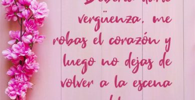 Las Mejores Frases De Amor Propiocon Imágenes
